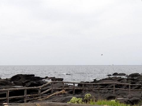 海風景.jpg